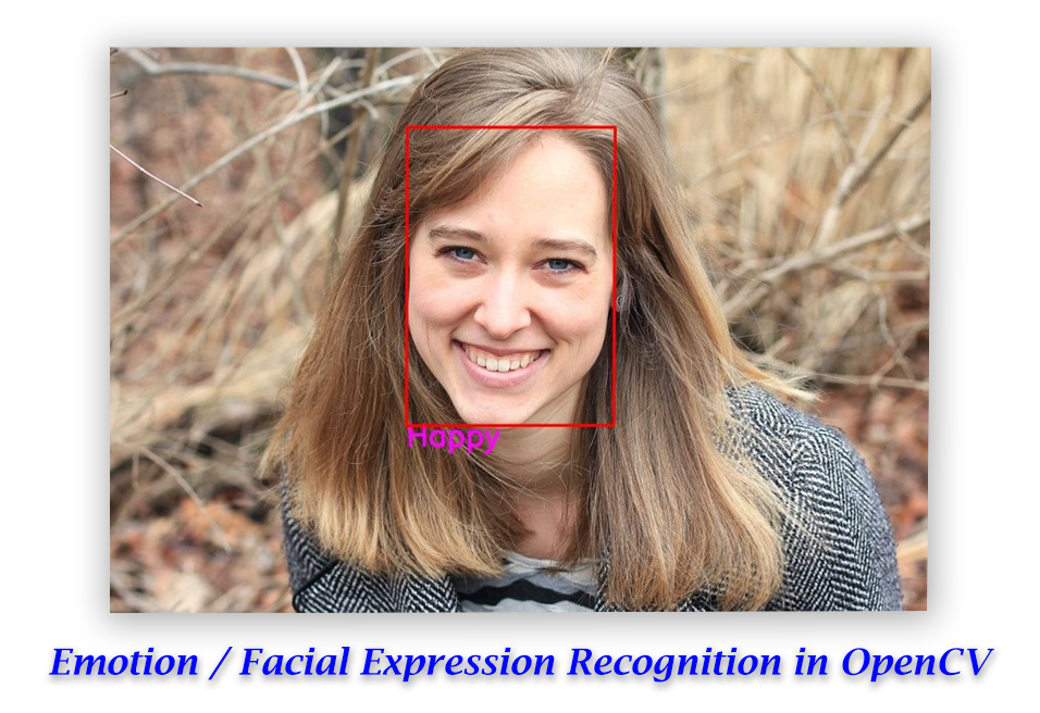 Emotion / Facial Expression Recognition with OpenCV.
